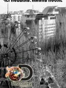 Чернобыль: жизнь после